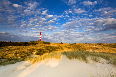 GER8253AW Lighthouse in the dunes, Amrum Island, Northern Frisia, Schleswig-Holstein, Germany