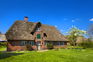 GER8258AW Thatched house, Nebel, Amrum Island, Northern Frisia, Schleswig-Holstein, Germany