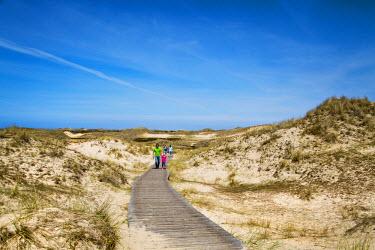 GER8275AW Walker in the dunes, Amrum Island, Northern Frisia, Schleswig-Holstein, Germany