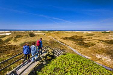 GER8277AW Walker in the dunes, Amrum Island, Northern Frisia, Schleswig-Holstein, Germany