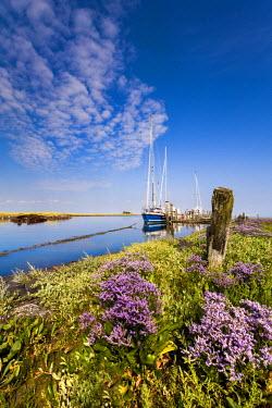 GER8296AW Marina, Hallig Langeness, Northern Frisia, Schleswig-Holstein, Germany