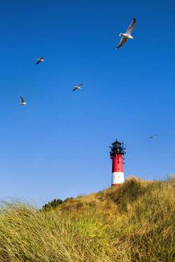 GER8349AW Lighthouse, Hörnum, Sylt Island, Northern Frisia, Schleswig-Holstein, Germany