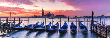 ITA3538AW Italy, Veneto, Venice. Row of gondolas moored at sunrise on Riva degli Schiavoni