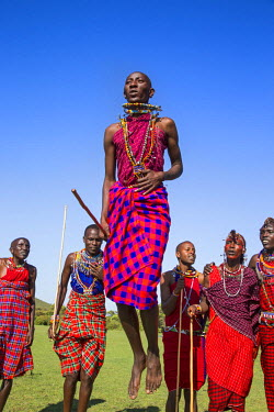 KEN9123AW Africa, Kenya, Narok County, Masai Mara. Masai men dancing at their homestead.
