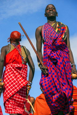 KEN9132AW Africa, Kenya, Narok County, Masai Mara. Masai men dancing at their homestead.