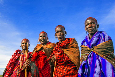 KEN9136AW Africa, Kenya, Narok County, Masai Mara. Masai elders dressed in traditional attire at their homestead, preparing for one of their customary ceremonies.