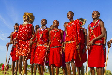 KEN9149AW Africa, Kenya, Narok County, Masai Mara. Masai men dancing at their homestead