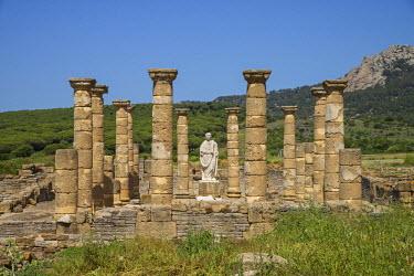 SPA6313AW Roman ruins Baelo Claudia near Bolonia, Costa de la Luz, Andalusia, Spain