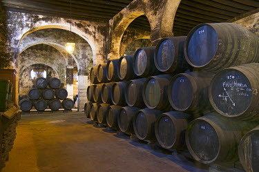 SPA6321AW Sherry casks in the Osborne winery, El Puerto de Santa Maria, Costa de la Luz, Andalusia, Spain