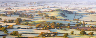 ENG11876AW The Somerset Levels covered in morning frost, Westbury-Sub-Mendip, Somerset, England. Autumn (November)