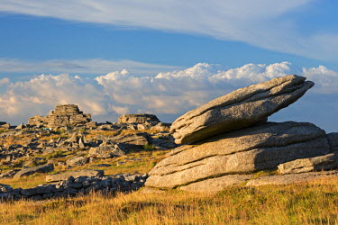 ENG11903AW Granite outcrops at Higher Tor in Dartmoor National Park, Devon, England. Summer (July)