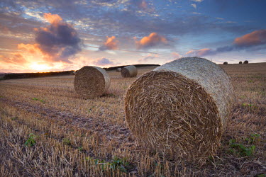 ENG12001AW Bales in a harvested corn field at sunset, Devon, England. Summer (September)