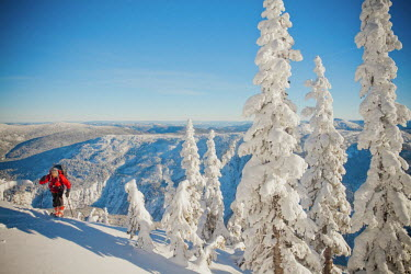 AR4998100018 A backcountry skiier touring, British Columbia, Canada