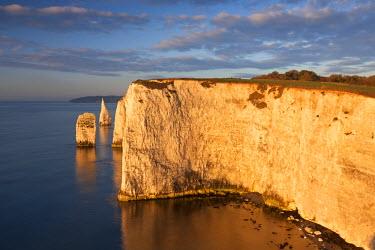 ENG12042AW Morning sunshine illuminates Handfast Point on the Jurassic Coast, Dorset, England.
