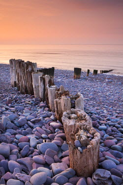 ENG12145AW Weathered wooden groyne on Bossington Beach at sunset, Exmoor National Park, Somerset, England. Spring