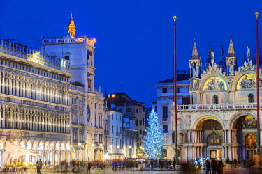 ITA3959 Europe, Italy, Veneto, Venice, San Marco, , Christmas tree in St Marks square