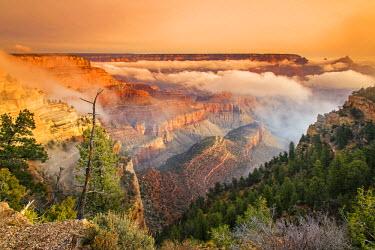 USA9451AW Foggy sunrise in the south rim, Grand Canyon National Park, Arizona, USA