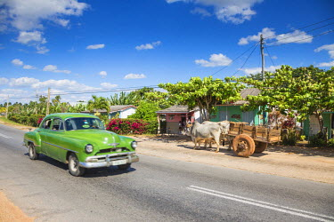 CB02312 50s American car passing Ox and cart, Pinar del Rio Province, Cuba