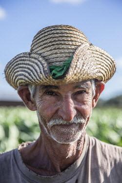 CB02315 Worker at a Tobacco Plantation, Pinar del Rio Province, Cuba