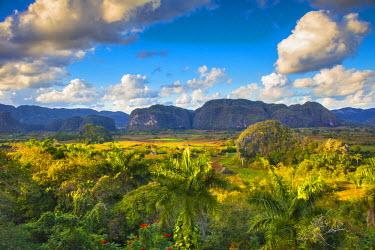 CB02320 Vinales Valley, Pinar del Rio Province, Cuba