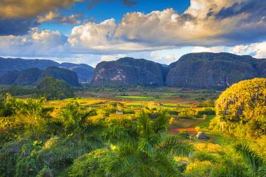 CB02321 Vinales Valley, Pinar del Rio Province, Cuba