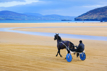 IRL0203AW Ireland, Co.Donegal, Fanad, Ballymastoker bay, Man sitting on horse drawn sulky on beach