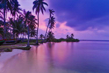 HMS2096895 Panama, San Blas archipelago, Kuna Yala, Kunas indigenous community, beach and coconut shores at sunrise
