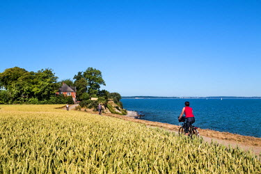 Cyclists at cliff Brodtener Ufer, Niendorf, Baltic coast, Schleswig-Holstein, Germany