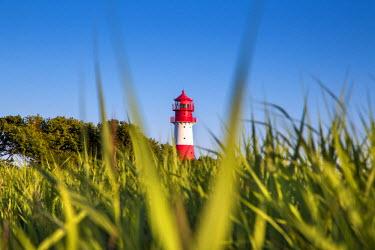 GER8716AW Lighthouse, Falshöft, Baltic coast, Schleswig-Holstein, Germany