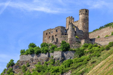 GER8549 Ehrenfels Castle is a ruined castle above the Rhine Gorge near the town of Rudesheim am Rhein in Hesse, Germany.
