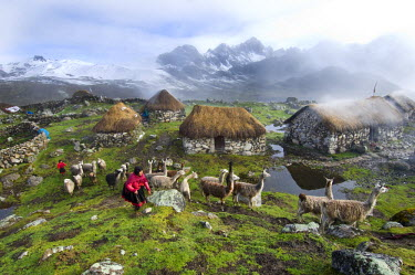HMS0875236 Peru, Carabaya Cordillera, Sinakara Range, Cuzco Province, Q'ero indigenous people, the ultimate descendants of Incas, Japu community, annex of Yanaruma, during the February carnival