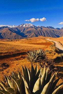 HMS0891750 Peru, Cuzco Province, Incas sacred valley, Andes landscape near Moray