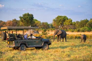 AF05SHA0023 Safari jeep and people watching elephants Botswana Africa