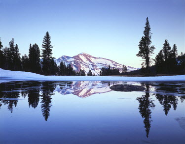 US05CTF0107 USA, California, Sierra Nevada Mountains, Yosemite National Park, snow-covered Mammoth Peak reflecting in a partially frozen tarn at Tioga Pass.