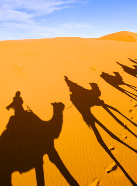 MOR2237AW Shadows of riders and camels in Sahara desert, Erg Chebbi, Morocco
