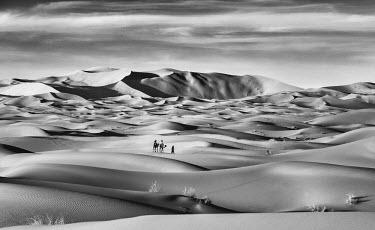 MOR2250AW Sand dunes of Erg Chebbi, Sahara, Morocco