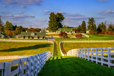 US18RSA0002 USA, Lexington, Kentucky, Darby Dan Farm
