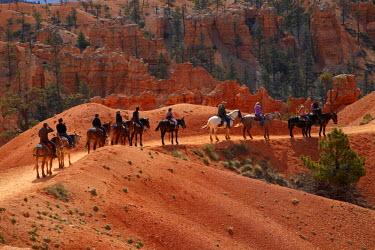 US45DWA0239 USA, Utah, Bryce Canyon National Park, horse trekkers near Queen's Garden Trail through hoodoos