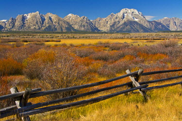 US51MHE0045 Fall color, Buck-and-rail fence, Grand Tetons, from Cunningham Cabin, Grand Teton National Park, USA, Wyoming, USA