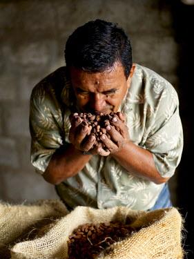 HMS0480453 Ecuardor, Los Rios province, cocoa beans