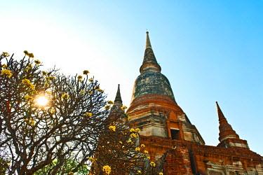 ARHETH000436 Buddahs at the ancient temple of Wat Yai Chai Mongkhon in Ayutthaya