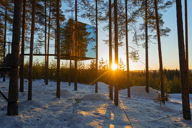 SWE4162 Arctic Circle, Lapland, Scandinavia, Sweden, The Tree Hotel, the Mirror Cube room