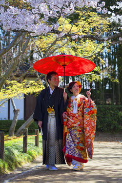 JAP0864AW Japanese couple wearing traditional clothing in Koraku-en Garden, Okayama, Okayama Prefecture, Japan