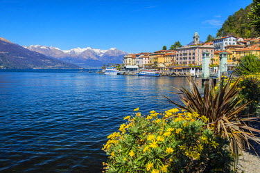 ITA4463AW Bellagio, Lake Como, Lombardy, Italy