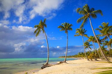 DM01430 Dominican Republic, Punta Cana, Cap Cana, Juanillo Beach