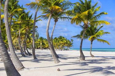 DM01436 Dominican Republic, Punta Cana, Cap Cana, Juanillo Beach
