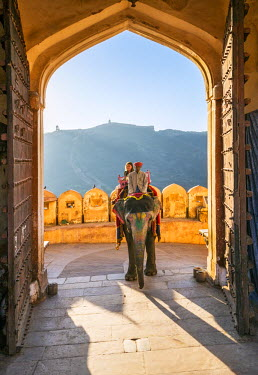 IND7832 India, Rajasthan, Jaipur, Amer.  A visitor rides an elephant through the Sun Gate to the magnificent 16th century Amber Fort.