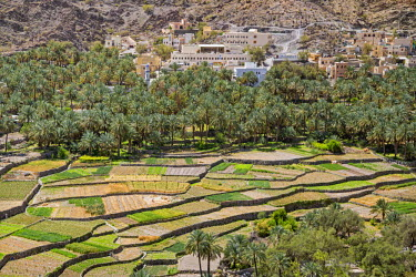 OMA2621 Oman, Ad Dakhiliyah Governorate, Balad Sayt.  The picturesque village of Balad Sayt with its neat irrigated fields enjoys an outstanding location in the Western Hajar Mountains near Wadi Bani Awf.