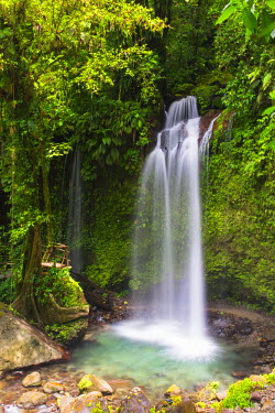DOM0172AW Dominica, Pont Casse. Soluton Falls is a recently opened, privately owned waterfall.