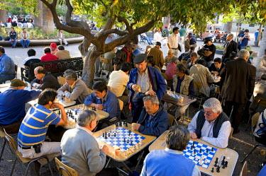 HMS0246729 Chile, Santiago de Chile, Plaza Las Armas, chess player